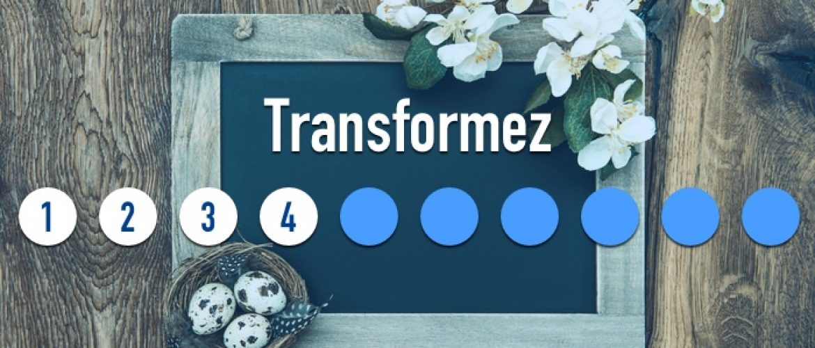 Les 10 raisons d'adopter Amise – #4 : Transformez